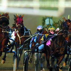 standardbred_racing_canada.jpg